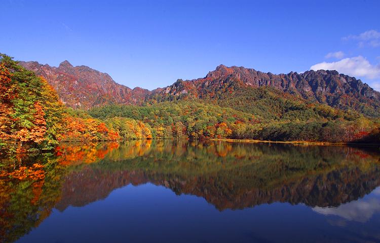 信州の自然