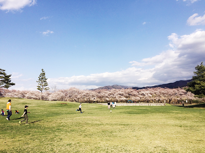 長野の春の風景「八幡原」