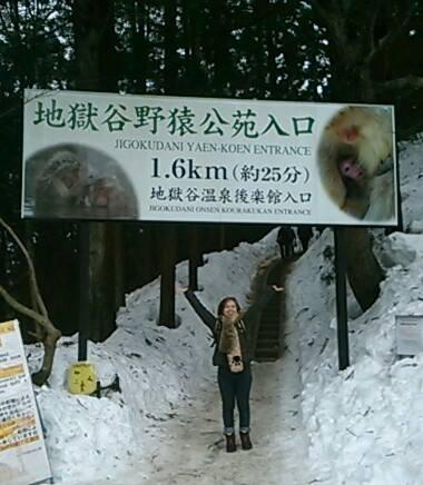 SnowMonkeyPark2