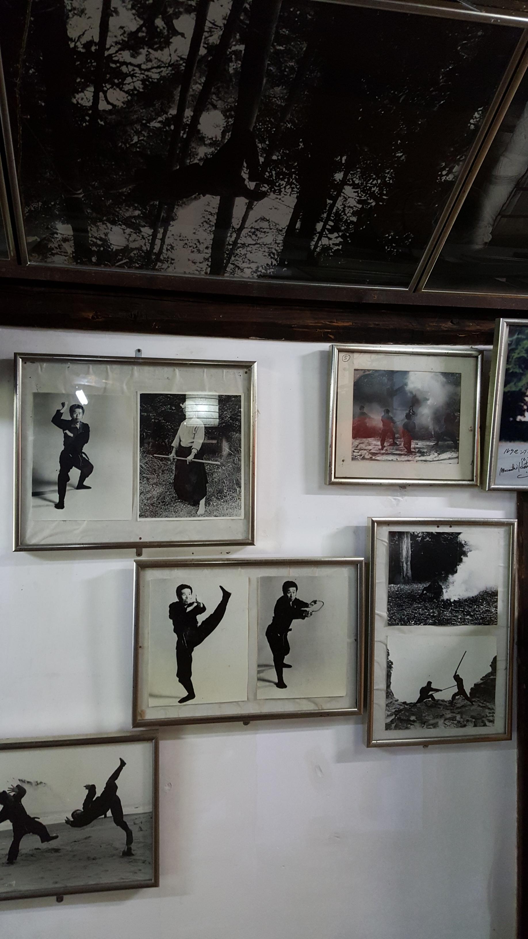 Ninja pictures