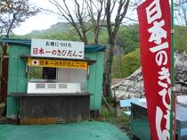 奥裾花自然園7.JPGのサムネイル画像