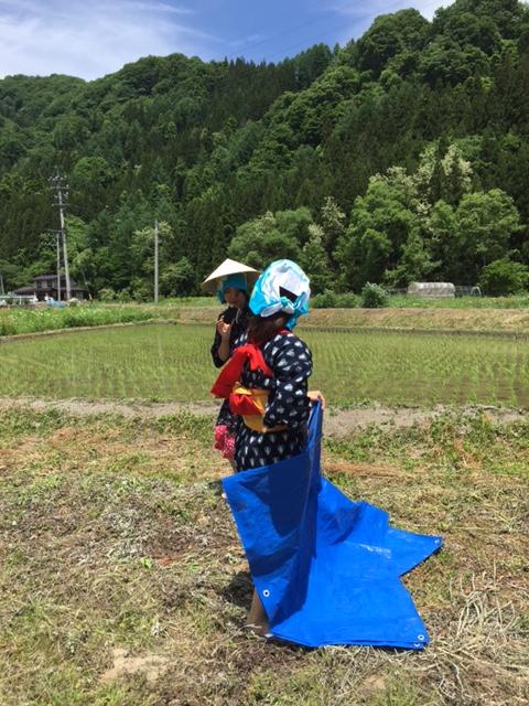 お田植え体験2.JPG