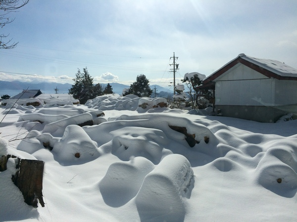 薪と雪.JPG