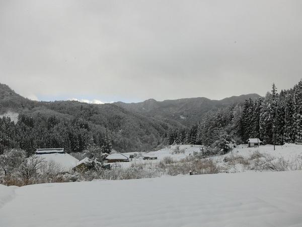 西条地区 大雪.jpg