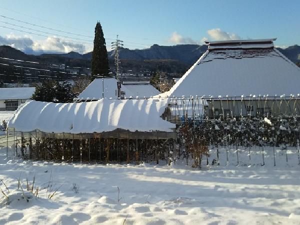 戸隠豊岡の雪景色.JPG