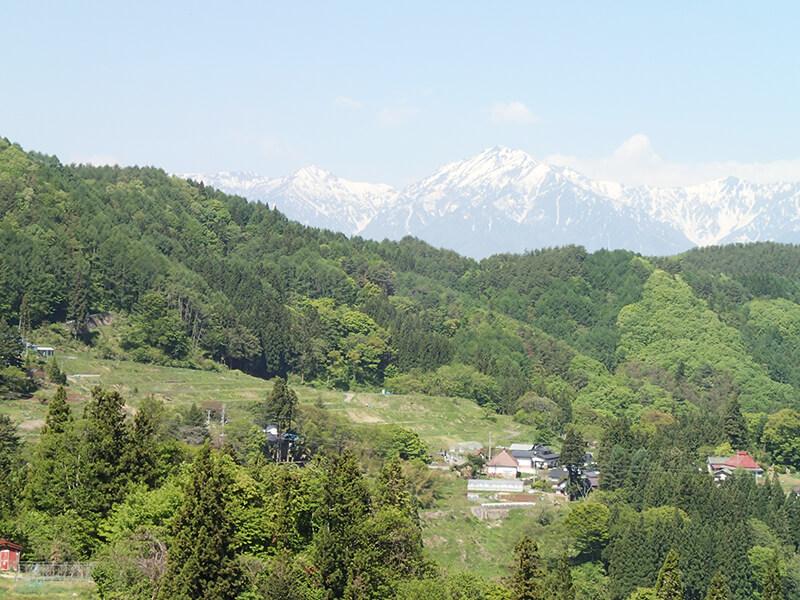 里山の奥には雪化粧した北アルプスと戸隠連峰。毎日見ても見飽きない風景です