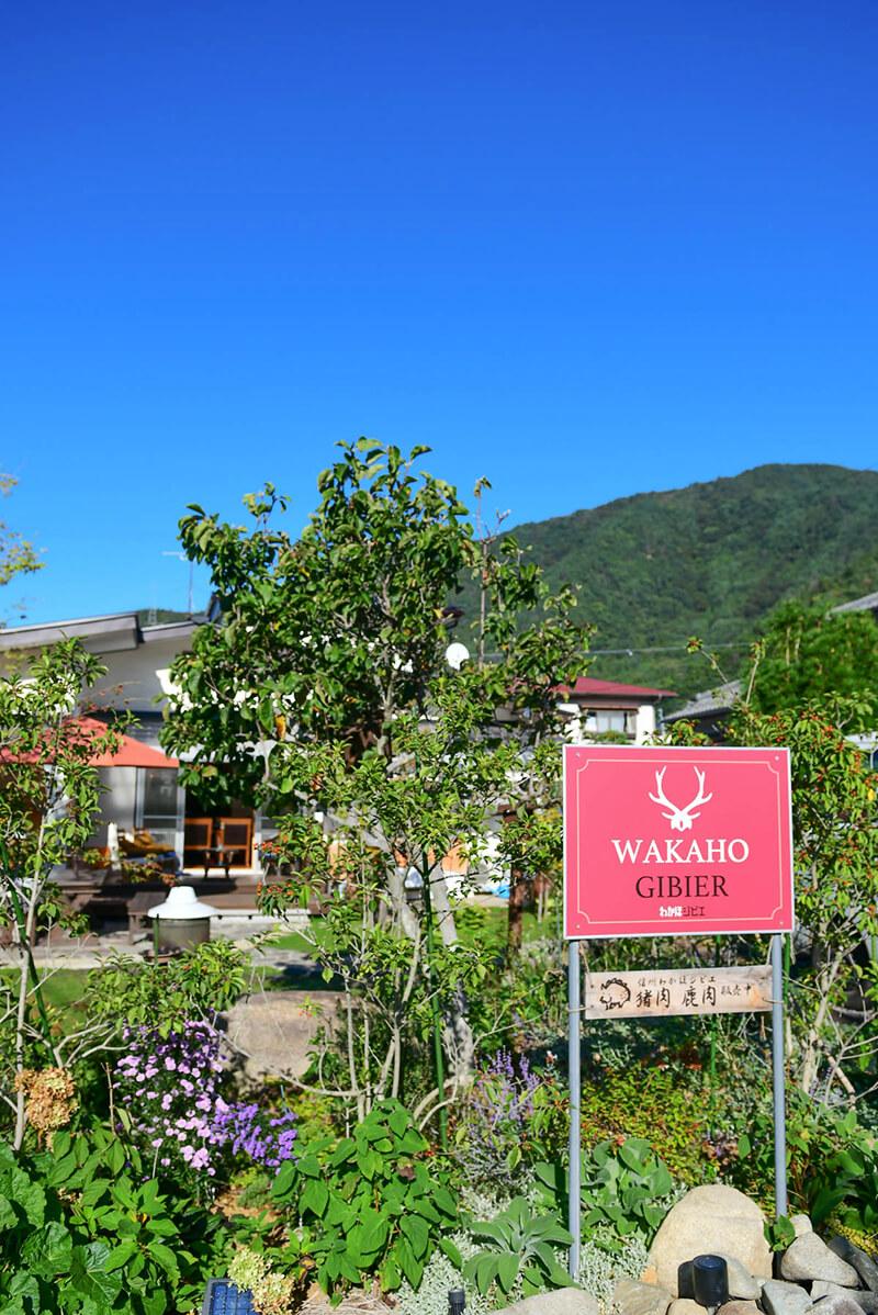 里山暮らしを味わえる民宿〈WAKAHO GIBIER B&B〉