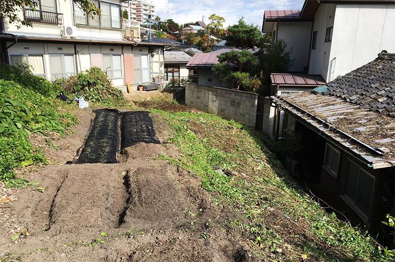 2016年11月には裏山に畑が培われ、空き家を覆っていた緑もすっきり。ここから少しずつ空き家の改修・修繕へと進んでいった(写真提供:『まち畑プロジェクト』)