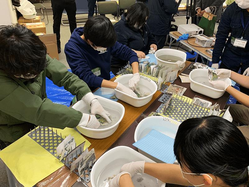 災害ボランティアの最中に発見された写真や各家庭から持ち込まれた写真の洗浄に多くの学生が協力しました(写真提供:中澤さん)